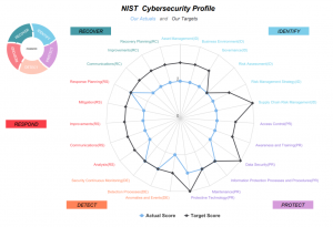 Cybersecurity Risk Management - DoubleCheck Software
